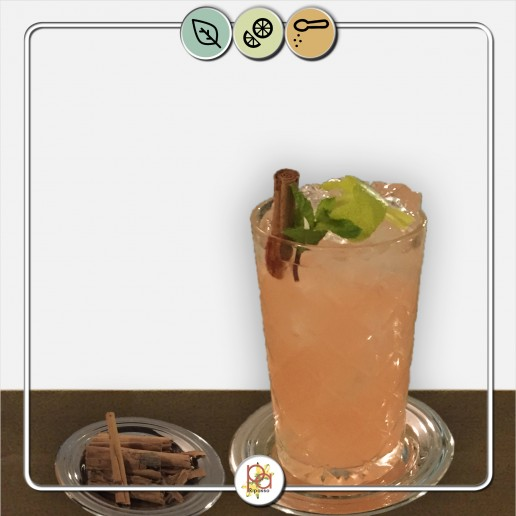 donga punch drink con cannella Bologna